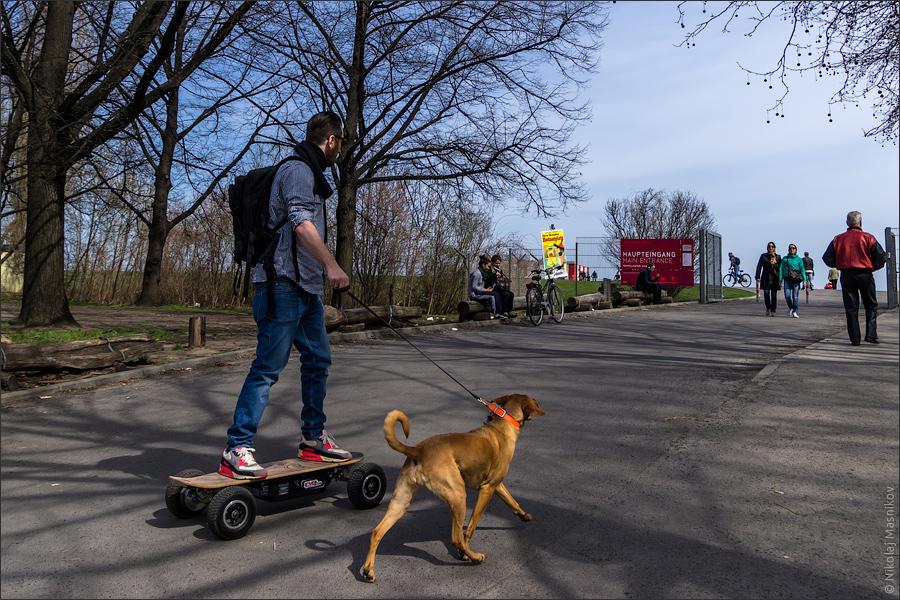 © Живой Берлин, Николай Мясников