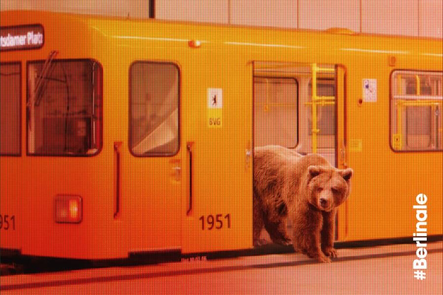 66_Berlinale_Plakat_1-1200