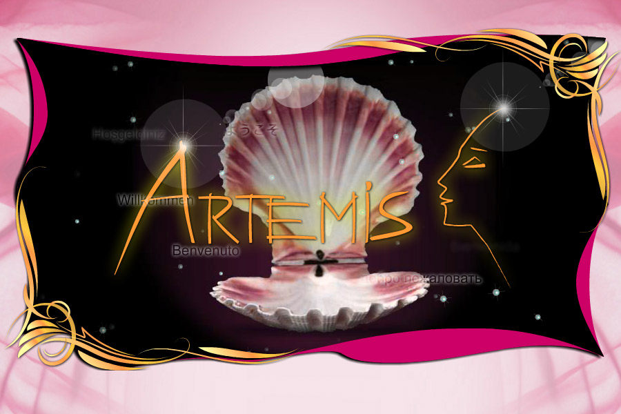 artemis-f-2i-900