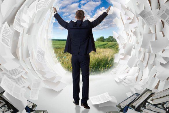 Фото: Vladimir Melnikov / Shutterstock.com