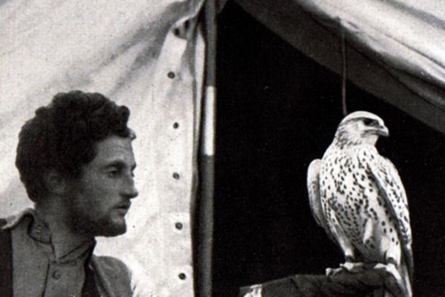 Полярник и орнитолог Ханс-Роберт Кнеспель, 1938 г. Фото: Википедия