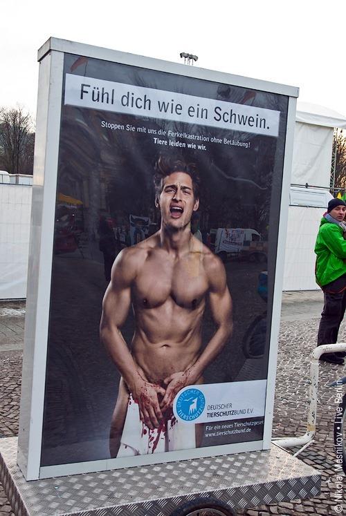 «Почувствуй себя свиньёй». © Живой Берлин