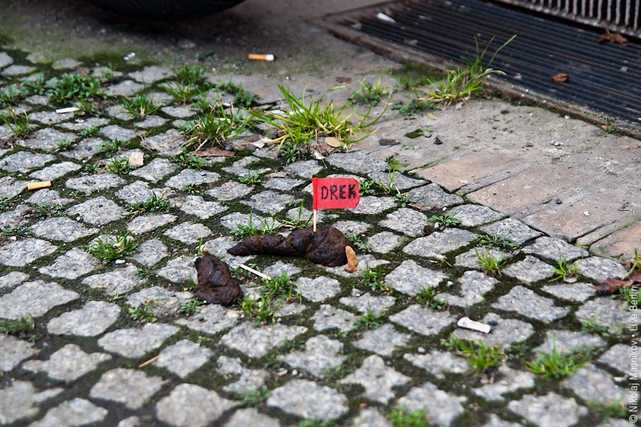 8. Разноглупости. «Дирьмо». © Живой Берлин