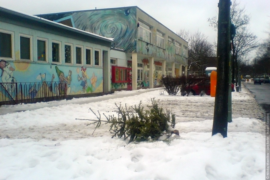 Праздничная ёлка. © Николай Мясников, Живой Берлин, 2010