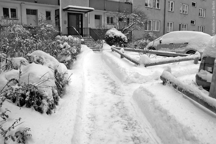 2. Чёрно-белая зима. Берлин. Сименсштадт