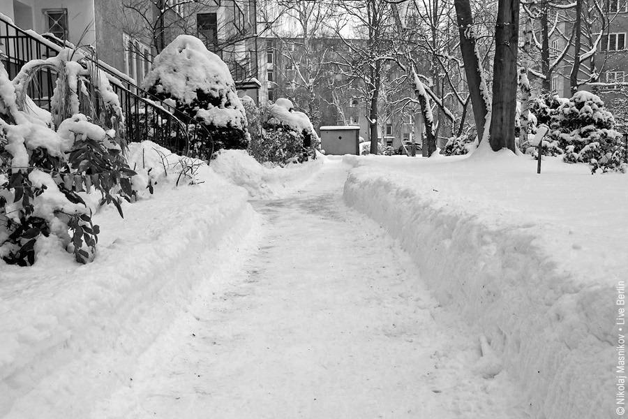 3. Чёрно-белая зима. Берлин. Сименсштадт