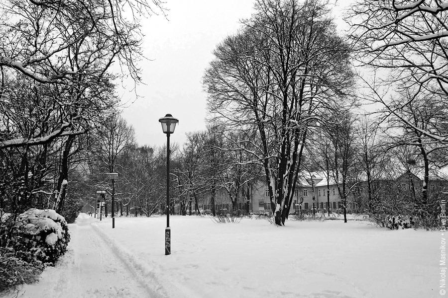 1. Чёрно-белая зима. Берлин. Сименсштадт