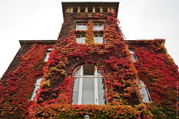 DRK Westend. Berlin · Charlottenburg