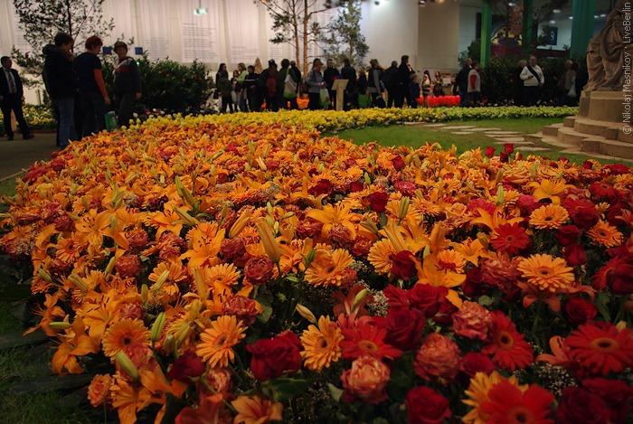 Небольшой участок цветочного зала